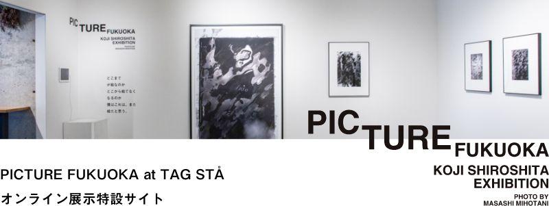 PICTURE FUKUOKA オンライン展示特設サイトはこちら